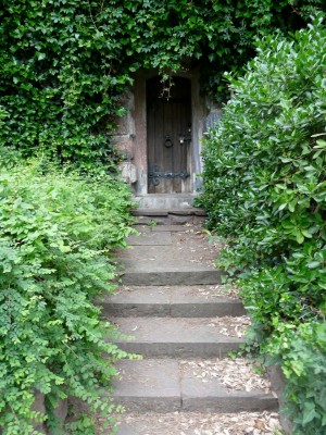 Image: Wooden Door Amongst Vines