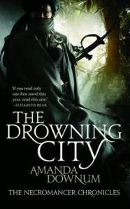 Book Cover: The Drowning City