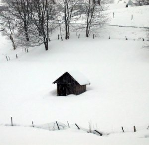 Image: Tiny Hut in the Snow
