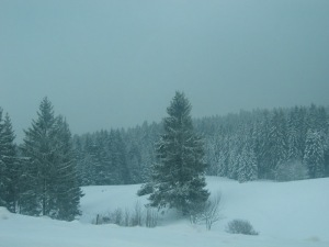Image: The High Black Forest in Winter