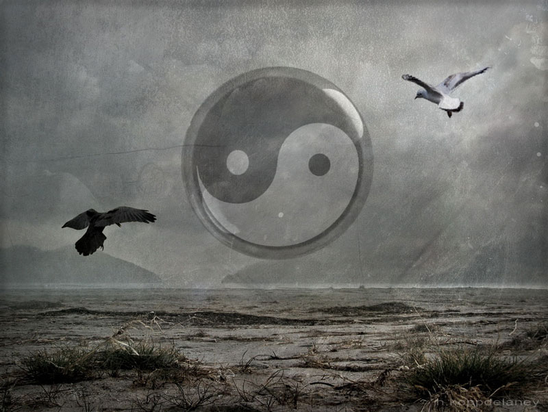 Ying Yang Bad : Finding harmony in change the wisdom of yin and yang