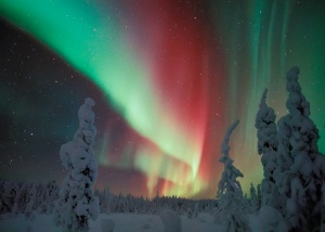 Image: Northern Lights in Winter Lapland