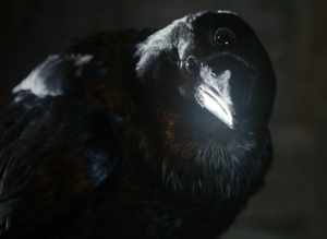 Image: Three-eyed Raven