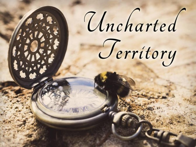 Image: Uncharted Territory